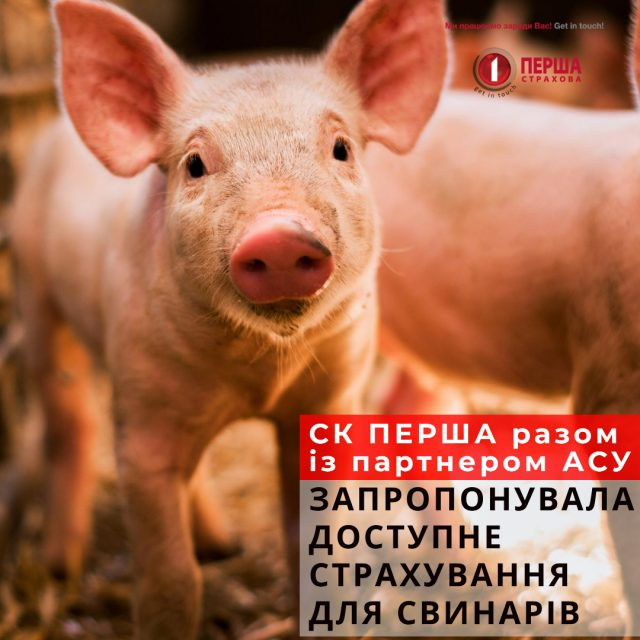 Доступне страхування для свинарів в умовах складної епізоотичної ситуації.