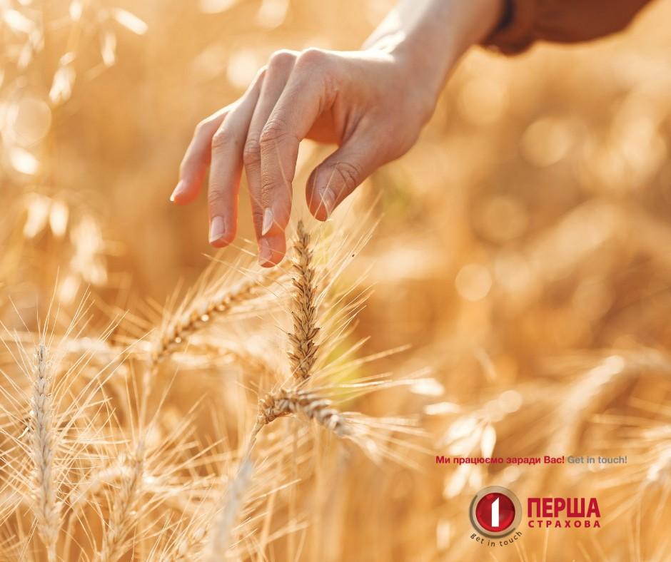 Страхування сільськогосподарських культур