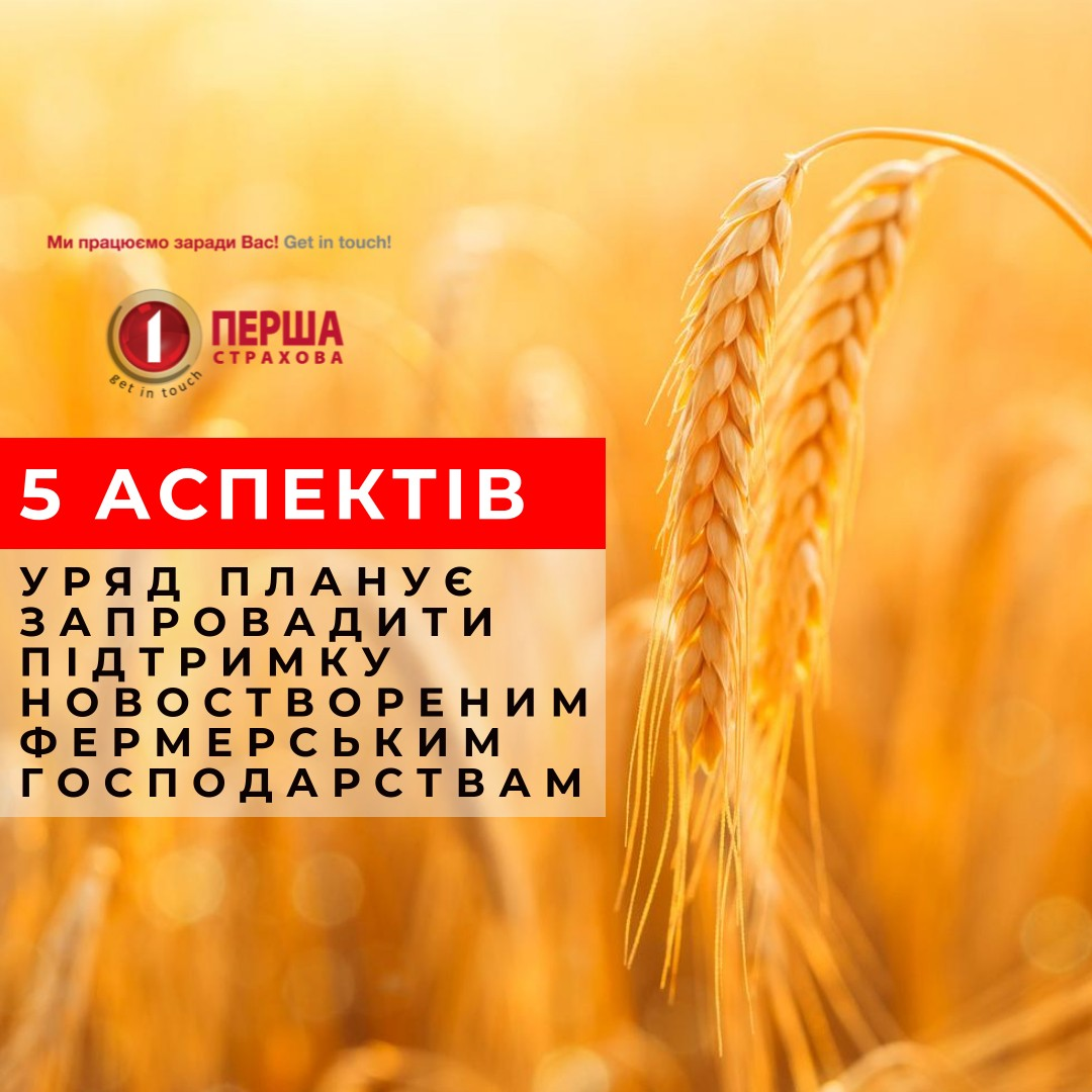 Уряд планує запровадити підтримку новоствореним фермерським господарствам: 5 ключових аспектів